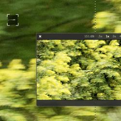 Blur Path