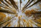 Hamedan, Iran - Autumn in Hamedan 03