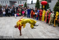 Chinese New Year festivities in Embassy in Tehran, Iran 04