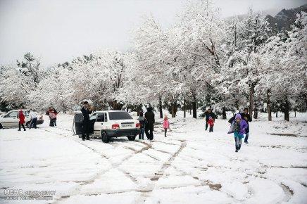Iran, Kerman Province, Kerman City Winter Snow Snowball 14