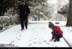 Iran,Tehran, Winter Snow 13