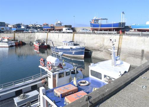 Harbour 6