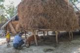 Village dans la région de Bagan