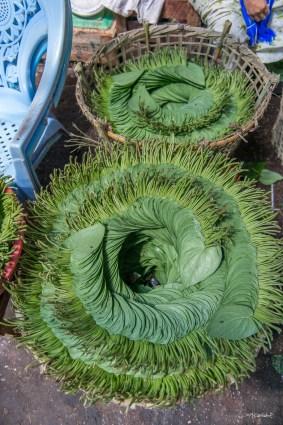 Feuilles de betel - Thiri Mingala Market Yangon.