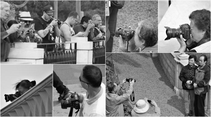 Photo Walk Collage