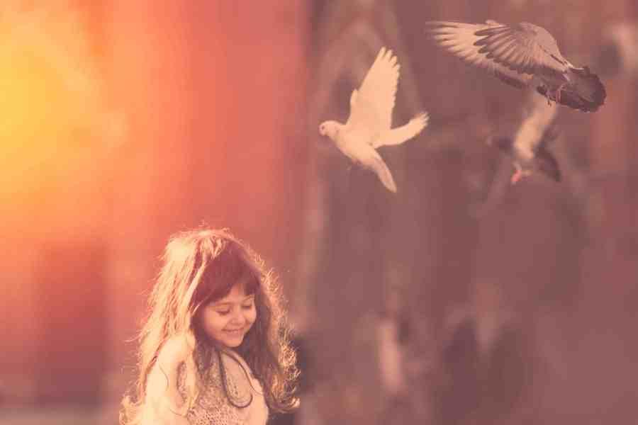 Birdy-II.jpg