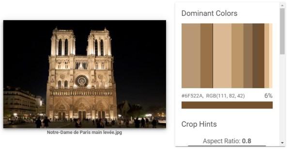 Google Image Analysis Tool Notre Dame 5