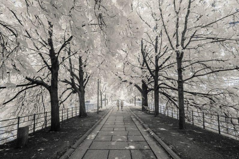 Paris Invisible, Pierre-Louis Ferrer