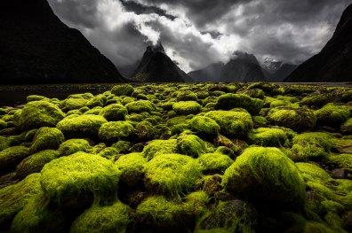 ©Nicolas ORILLARD DEMAIRE - Paysages naturels du monde
