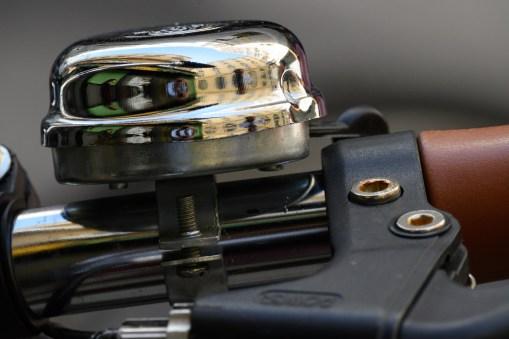 NIKON Z 50 - NIKKOR Z DX 50-250mm f/4.5-6.3 VR - 250 mm - ¹⁄₄₀₀ s - ƒ / 11 - ISO 2000