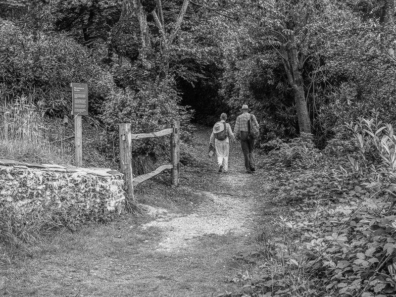 Photo Walk, Cliveden - Buckinghamshire 14