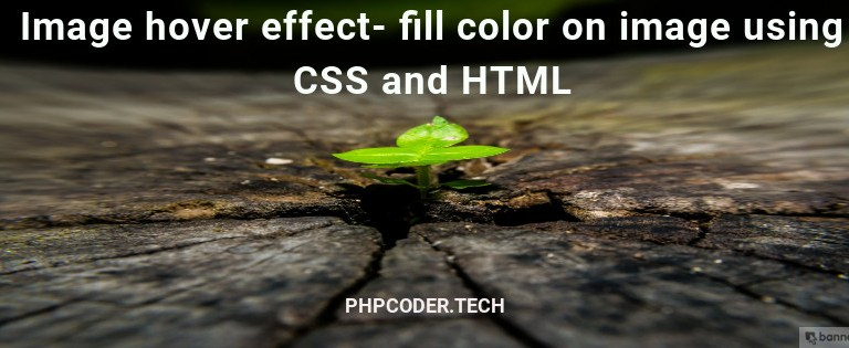 Image hover effect- fill color on image using CSS and HTML