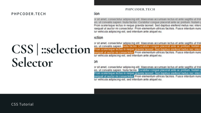 Selction in CSS | CSS ::selection