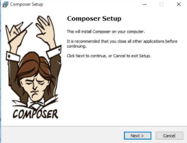 composer install