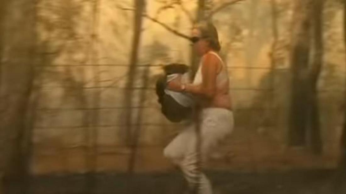 Une Australienne a sauvé un koala d'un immense incendie.
