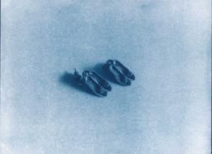 PHROOM // Casa Azul – Giulia Iacolutti