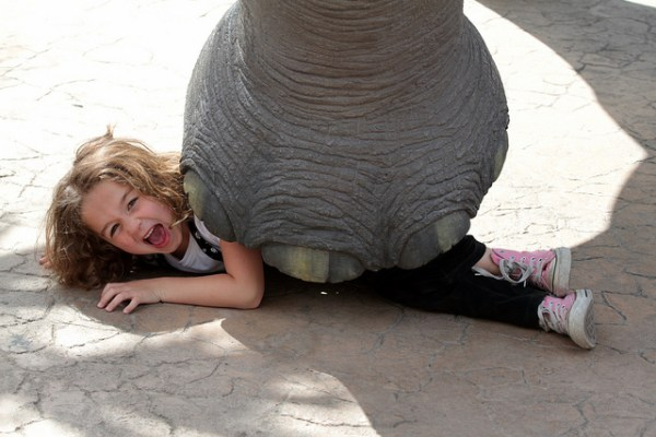 elephant crushing girl