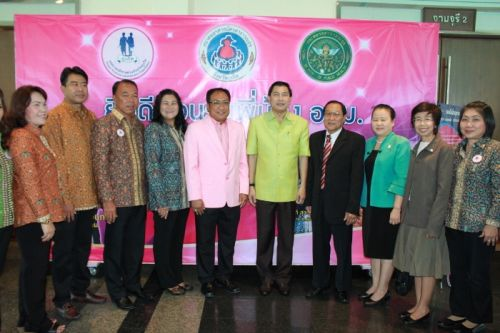 Phuket National Volunteers Day 2013
