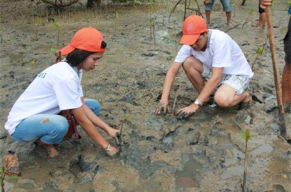 Phuket KEE Resort's Green Initiative