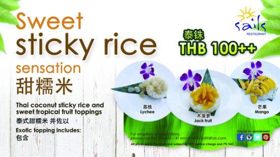 Sweet Sticky rice TV-01