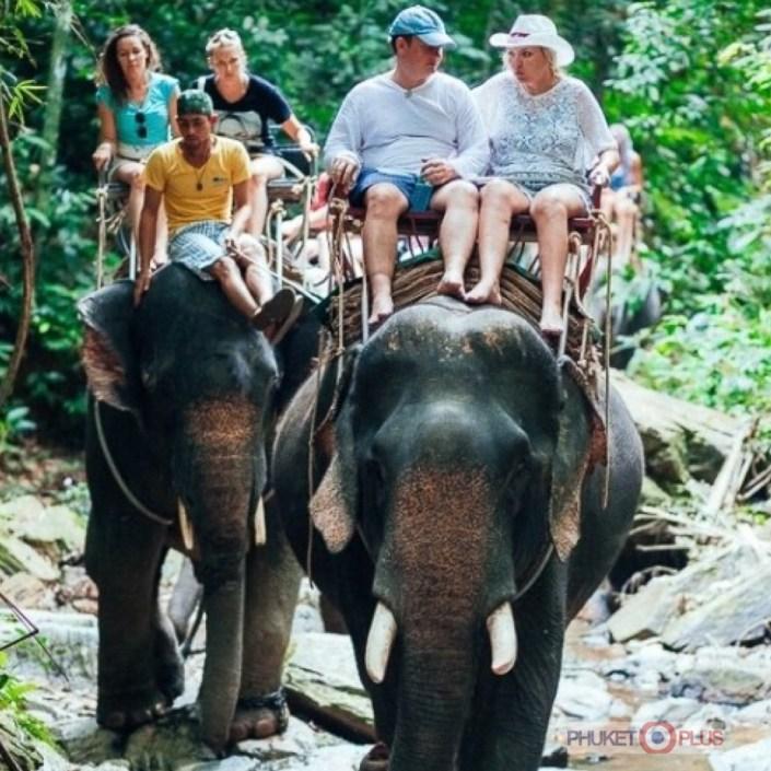 катание на слонах с рафтингом
