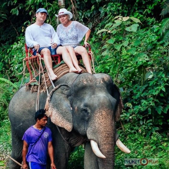 где покататься на слонах на Пхукете