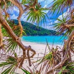 экскурсия на симиланские острова с пхукета с русским гидом на скоростной лодке