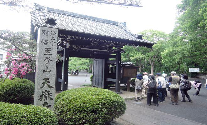 天嶽寺|山門