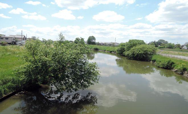 新平和橋からの景色(元荒川)