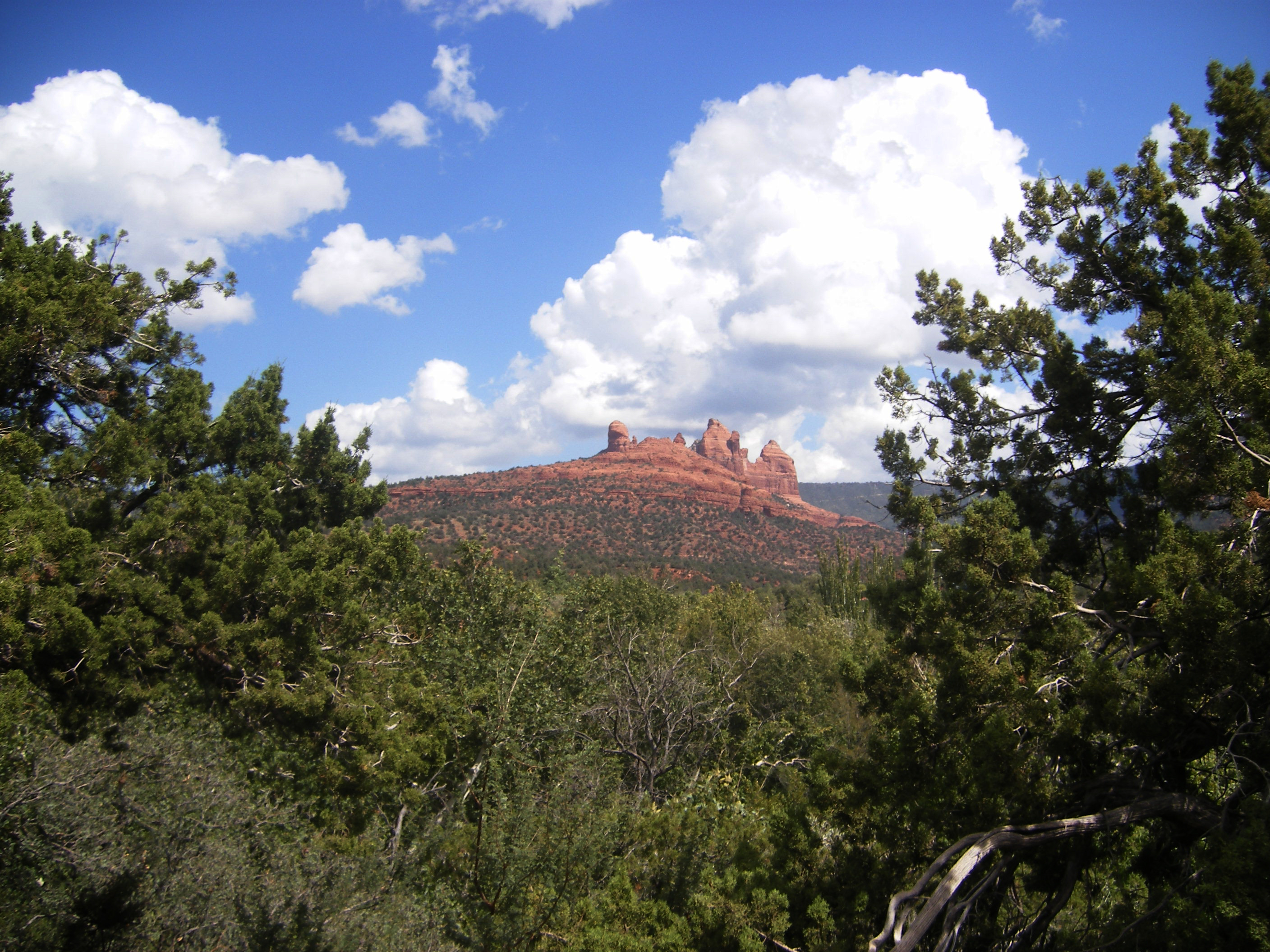 Driving into Sedona and seeing red rocks