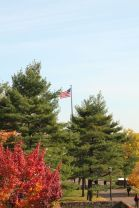 The american flag flies sky high surrounded by the tall trees on campus.