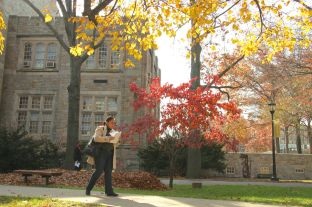 Usually, the buildings on campus are the main attraction, but here, the trees are just golden.
