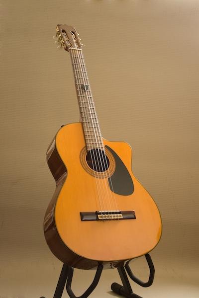 Tuning a Guitar using Resonance