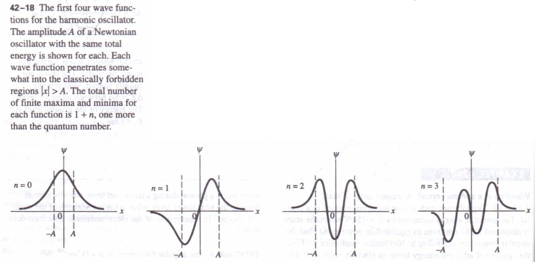 Quantum And Newtonian Oscillators Physics Homework Help