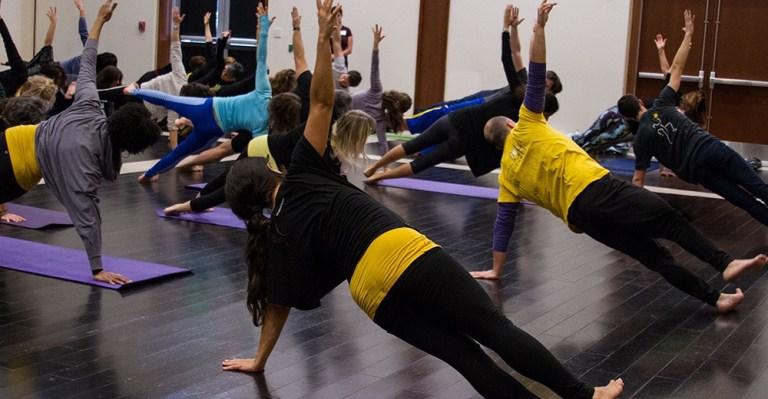 Princípios de Pilates da Physio Pilates - Polestar