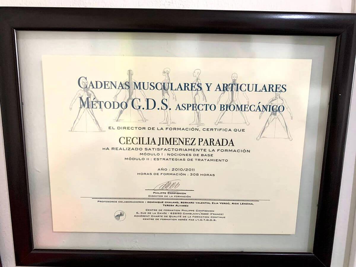 Certificado Cadenas Musculares y Articulares Método GDS