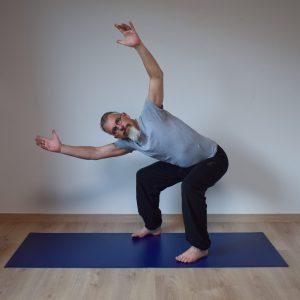 online yoga lessen workshop physioyoga