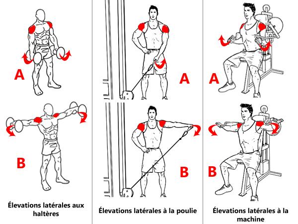 Exercices pour le faisceau latérale des épaules