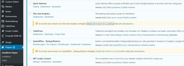 Plugin-Updates in WordPress manuell ausführen