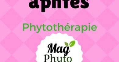 traitement aphtes phytothérapie