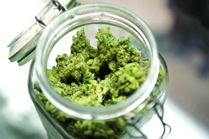 Medical marijuana is shown in a jar at The Joint Cooperative in Seattle