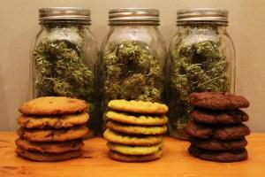 Meta Slider – HTML Overlay – cannabis cookies