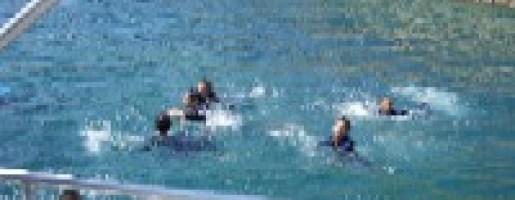plongee_bateau