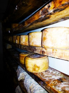 formatges 3
