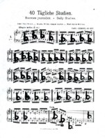 Pia Sommer - Dibujos Partiturales 1