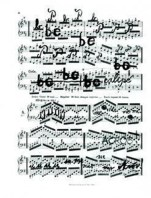 Pia Sommer - Dibujos Partiturales 4