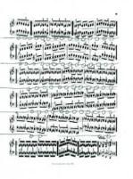 Pia Sommer - Dibujos Partiturales 8