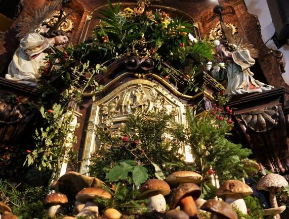 Pilze 2017 von unten Altar