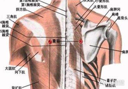右肩胛骨下方疼痛怎麼辦? 4種治療方法助你緩解肩胛疼痛 - 色彩地帶