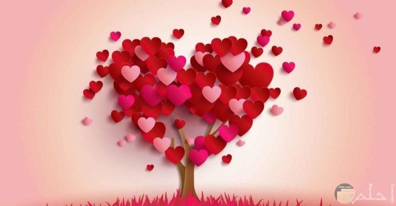 صور عبارات حب روعة رومانسية مكتوب عليها